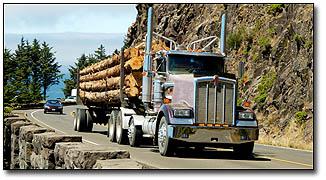 logging_truck