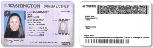 new_driver_license_look