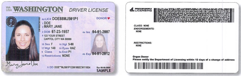 Nd driver s license best background check by drivers license number